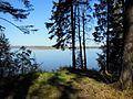 Kungursky District, Perm Krai, Russia - panoramio (186).jpg