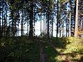 Kungursky District, Perm Krai, Russia - panoramio (188).jpg