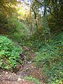La Combe-de-Lancey abc15 ruisseau au Pont du martinet.JPG