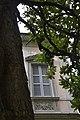 La Villa dietro la magnolia.jpg