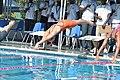 Ladies over 12yrs Swimming Comp.jpg
