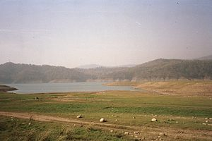 Lake in Corbett National Park