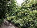Lane to Woodridge Cross - geograph.org.uk - 483754.jpg