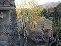 Laroque des Alberes - panoramio (24).jpg