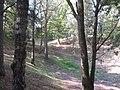 Les entonnoirs de Leintrey - Vue sur un entonnoir - 003.jpg