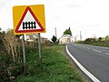 Level crossing sign south of Shippea Hill station - geograph.org.uk - 1516875.jpg