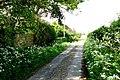 Lewell Mill Farm - geograph.org.uk - 797452.jpg