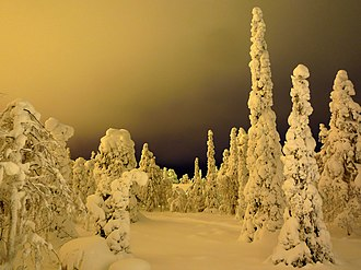 Nocturnality - Light pollution on a ski slope in Finland gives the area a hazy, brightened sky.