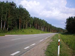 Lithuanian Road KK128.JPG