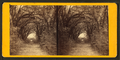 Live Oak Avenue in Bonaventure, from Robert N. Dennis collection of stereoscopic views 2.png