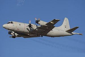 601 Squadron (Portugal) - Image: Lockheed P 3C Orion, Portugal Air Force JP7495968
