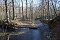 Long Creek tributary Arkansas.jpg