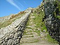 Looking up the Battery steps - geograph.org.uk - 582704.jpg