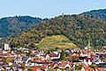 Lorettoberg-Ansichten (Freiburg im Breisgau) jm54249.jpg