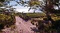 Ludington, MI 49431, USA - panoramio (6).jpg