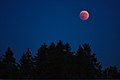 Lunar Eclipse 2018 SG 018 (29823674828).jpg