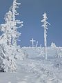 Lusen Gipfelkreuz im Winter.jpg