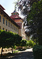 Lviv National Forestry University of Ukraine Dendrological Park.JPG