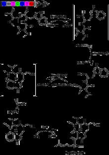 lyngbyatoxina wikipedia