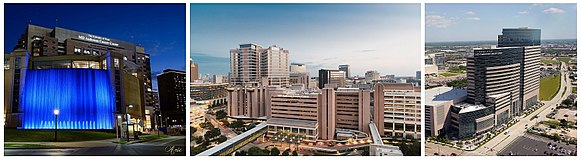 University of Texas MD Anderson Cancer Center - Wikipedia