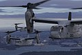 MV-22B Osprey flies over Sydney Harbour 24.jpg