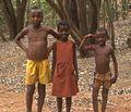 Madagascar 06 088 - Flickr - gailhampshire.jpg