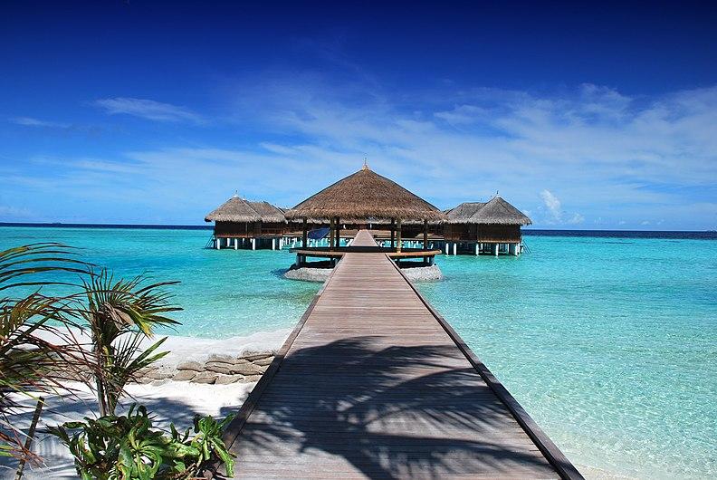 Maldives Ile Beach Sun Holiday Ocean Nature Sand.jpg