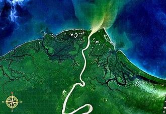 Mamberamo River - Mamberamo entering the sea, seen from space.