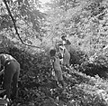 Mannen en jongens op zoek naar graven op het terrein van de voormalige Jodensava, Bestanddeelnr 252-6464.jpg