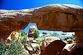 Mano Arch, Devils Garden, Grand Staircase-Escalante National Monument, Utah, USA.jpg