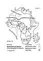 Map 1 Africa Biogeography.jpg