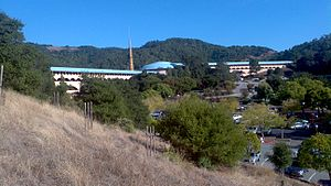 Image Result For Marin County Building