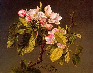 Martin Johnson Heade - Apple Blossoms CGF