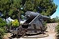 Massive Gun (5836281106).jpg