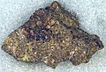 Massive sulfide (bornite & Pt Pd-rich chalcopyrite-pyrrhotite) (platinum-palladium ore) (Johns-Manville Reef, Stillwater Complex, Neoarchean, 2.71 Ga; Stillwater Mine, Beartooth Mountains, Montana, USA) (14828837001).jpg