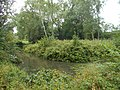Medieval moated site, South Park Farm, Grayswood, Surrey 01.jpg