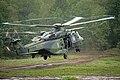 Mehrzweckhubschrauber NH90 des Heeres.jpg