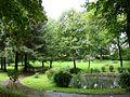 Meinerzhagen - Stadtpark 06 ies.jpg