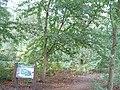 Mere End - geograph.org.uk - 58808.jpg