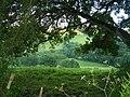 Mid Devon , Exe Valley - geograph.org.uk - 1230284.jpg
