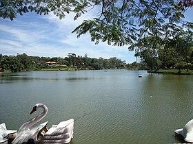O lago Javary, o maior cartão postal da cidade