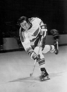 Mike Murphy (ice hockey, born 1950) Canadian ice hockey player and coach