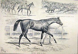Minting (horse) - Minting at Kempton 1888