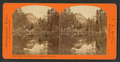 Mirror View North Dome, Yo Semite Valley, Cal, by Reilly, John James, 1839-1894.png