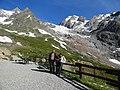 Mont Fortin, Val Veny (30806053187).jpg