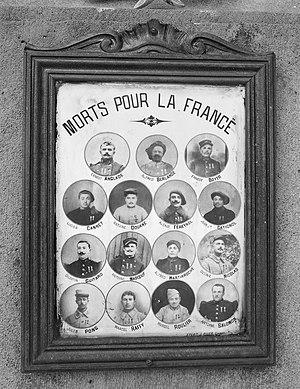 Mort pour la France cover