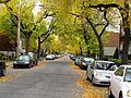 Montréal rue St-Denis 351 (8213775096).jpg