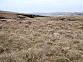 Moorland and peat hags - geograph.org.uk - 1258057.jpg