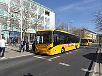 Movia bus line 184 at Lyngby Station 02.jpg