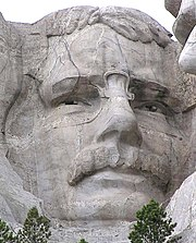 Roosevelt's face on Mt. Rushmore